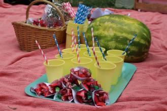 picnic-3