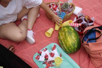 picnic-4